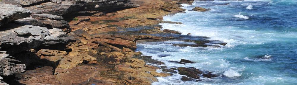 Coral Shores Realty